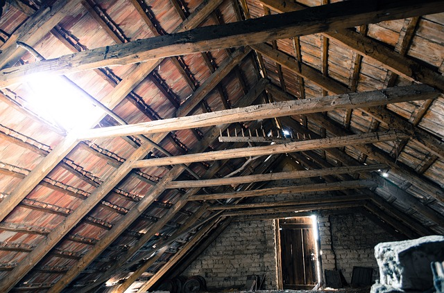 Spring Cleaning - Attic/Basement