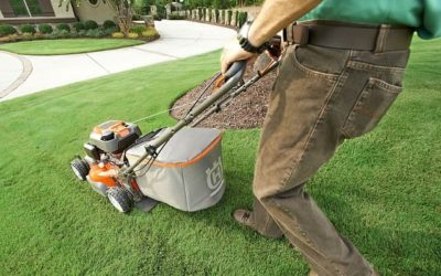 Easy Lawn and Garden Fixes
